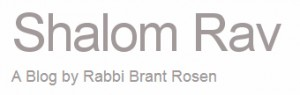 Rabbi Brant Rosen's Blog