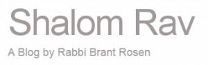 Rabbi Brant Rosen's Blog